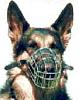 "German Shepherd Medium Size 4.5"" length and 12.5"" Circ"