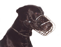"Big Dogs Breed Wire Muzzle (Small Size) 5.75"" length and15.5"" Circ"