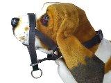 Nylon Head Collar for Daschund, Spaniel, Schnauzer
